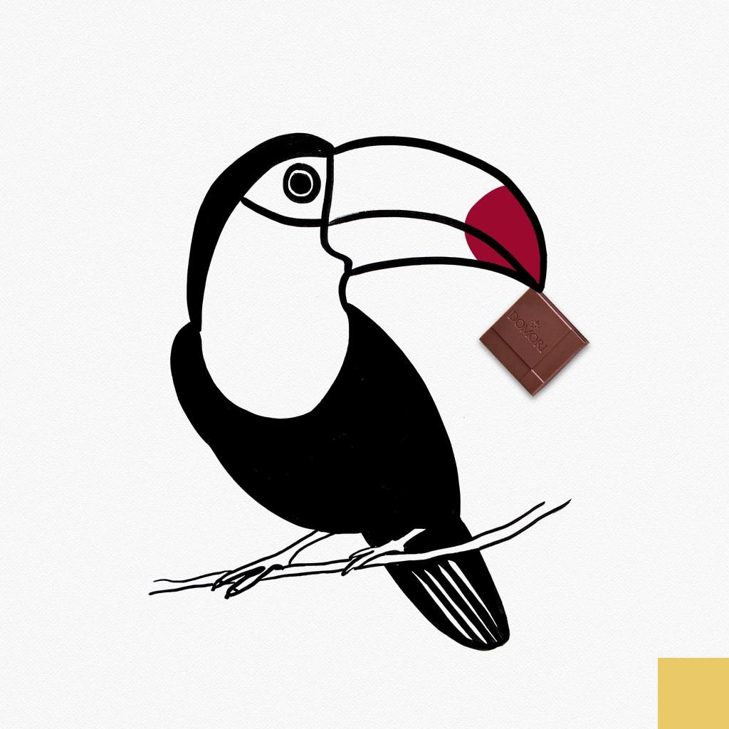 domori-tucano